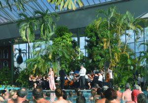 VT&S_Orchester2_klein